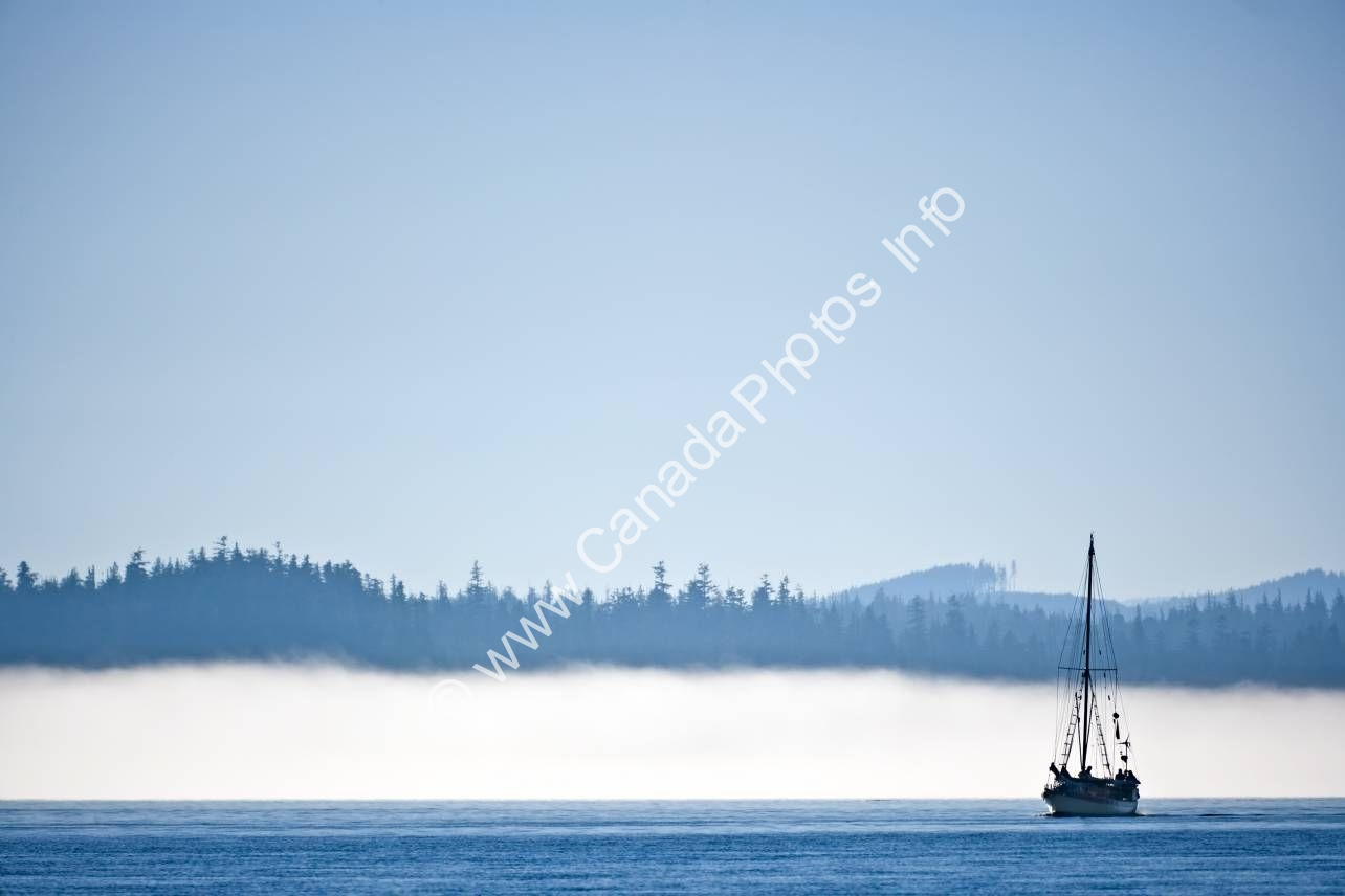 Photo Scenic photo Sailboat Fog Vancouver Island