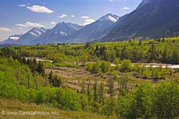 photo of Mountain Range Vally Waterton Lakes National Park