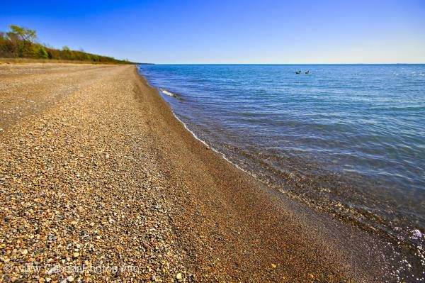 photo of Shoreline Point Pelee National Park